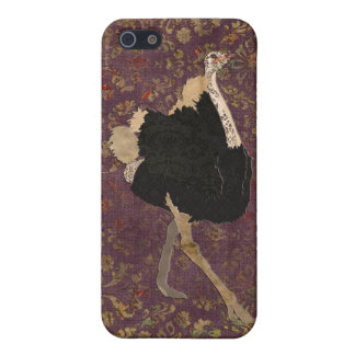 Ostrich iPhone Case iPhone 5 Covers