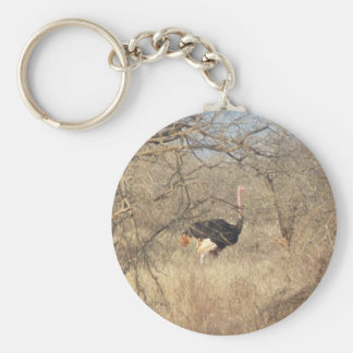 Ostrich Key Chain, African Safari Collection Basic Round Button Key Ring