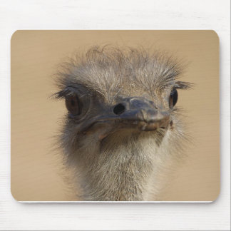 Ostrich Mouse Pad