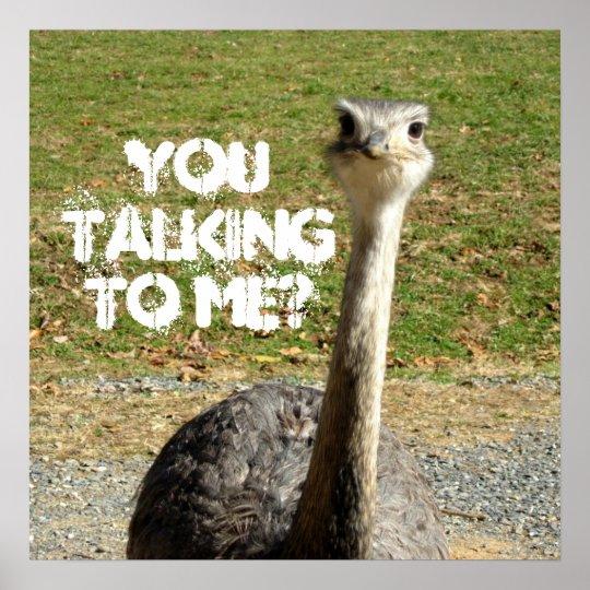 ostrich you talking to me poster. Black Bedroom Furniture Sets. Home Design Ideas
