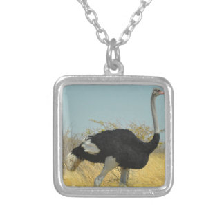 Ostrige out for a run silver plated necklace