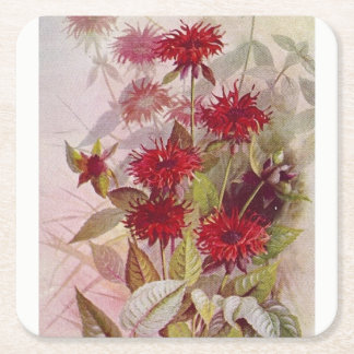 Oswego-Tea Botanical Wildflower Paper Coaster