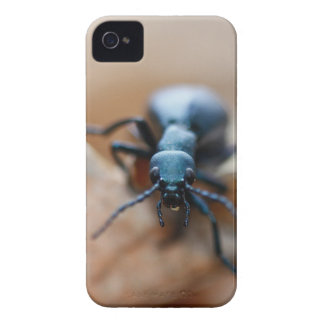 Other Worldly Insect iPhone 4 Case-Mate Cases