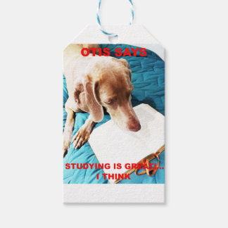 Otis Says: Studying Is Great!! Gift Tags