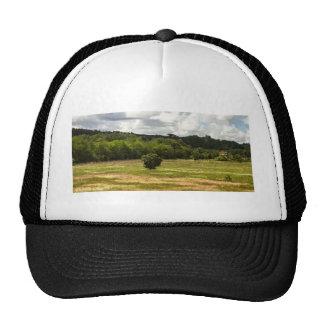 OTR5 CAP