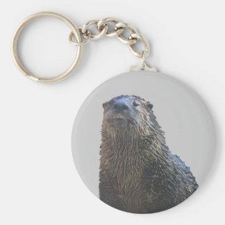otter 2 basic round button key ring