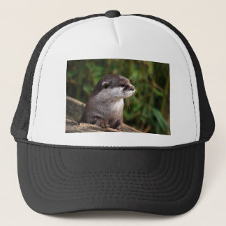 otter-342 trucker hat