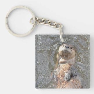 Otter Back Float Key Ring