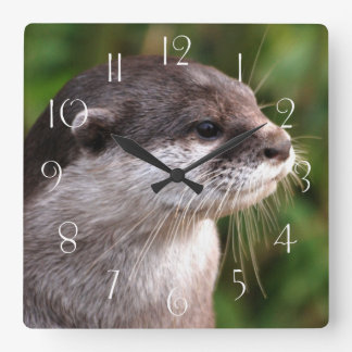 Otter close-up square wall clock