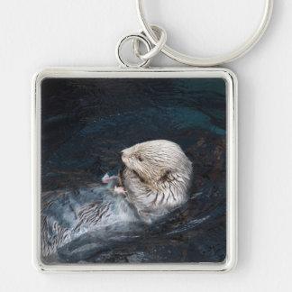 Otter eating water animal nature aquatic wild zoo key ring