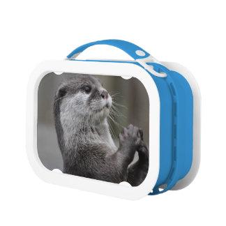 Otter Lunchbox