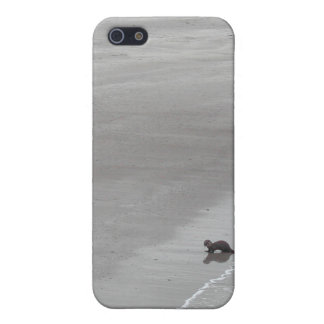 Otter on a beach in Ireland. iPhone 5 Cover