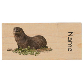 Otter on a Jump Drive