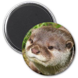 Otter Portrait Magnets