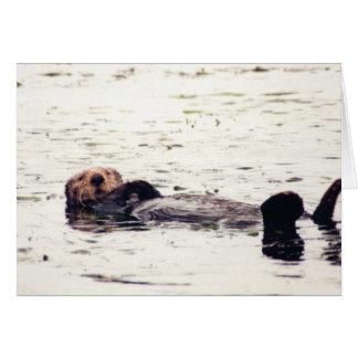 Otter Raft Card