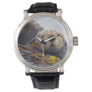 Otter Surprise Watch