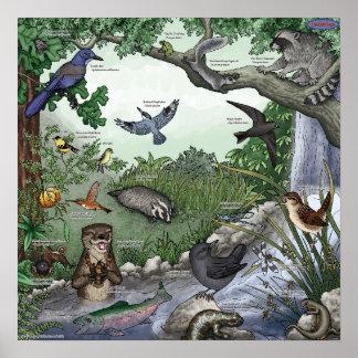 Otter Twin Magic Poster