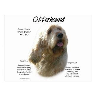 Otterhound History Design Postcard