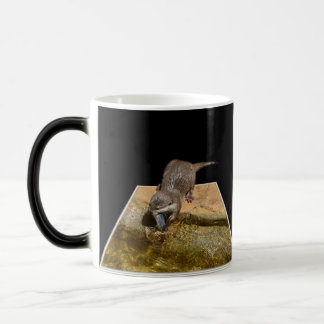 Otterly Delicious Fish, Otter, Magic Morph Mug
