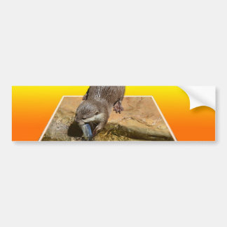 Otterly Orange, Bumper Sticker