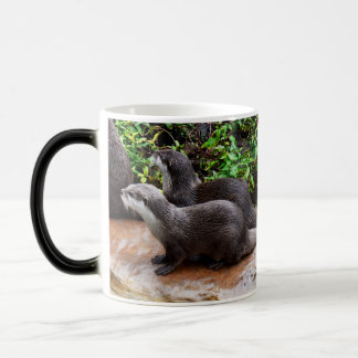 Otterly To Cute, Otter, Magic Morph Mug