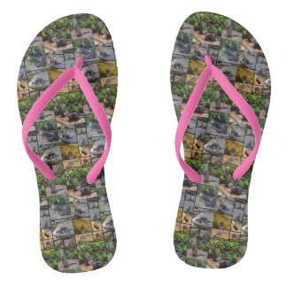 Otters In A Photo Collage, Ladies Pink Thongs