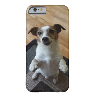 Our Amazing Jack Russell Rescue Dog Sitting up Barely There iPhone 6 Case