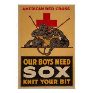 Our Boys Need Sox Poster