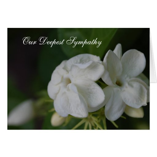 Our Deepest Sympathy Card