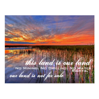 Our Land: Everglades Postcard