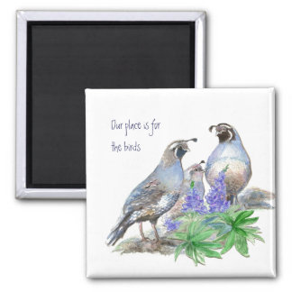 Our place is for the birds, California Quail Square Magnet