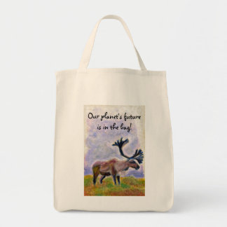 """Our planet's future is in the bag!"" Canvas Bag"