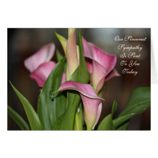 Our Sincerest Sympathy Card