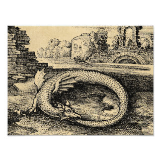 Ouroboros Dragon Photo Print
