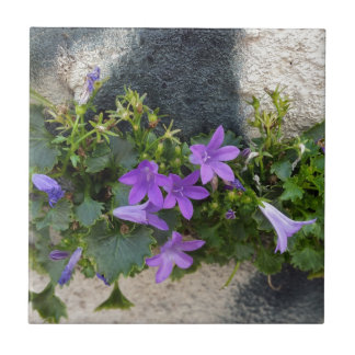 out of the wall flower small square tile