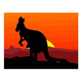 Outback Australian Kangaroo at Sunset Post Card