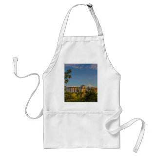 Outdoor Apron