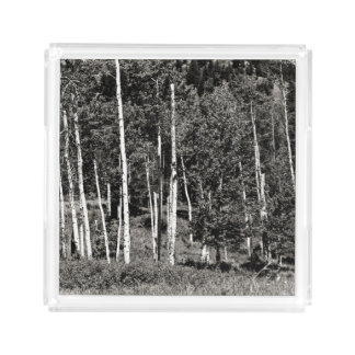 Outdoor Black & White Treeline Serving Tray