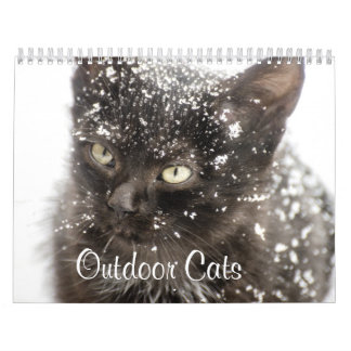 outdoor cats in nature wall calendars
