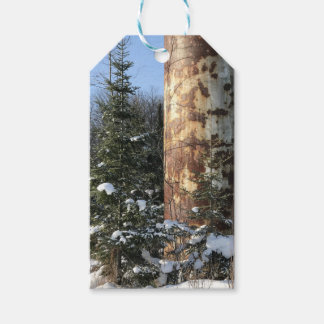 Outdoor Industrial Landscape Gift Tags