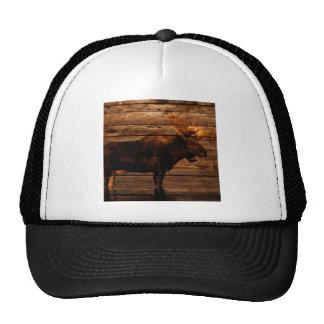 outdoorsman distressed wood wildlife bull moose cap