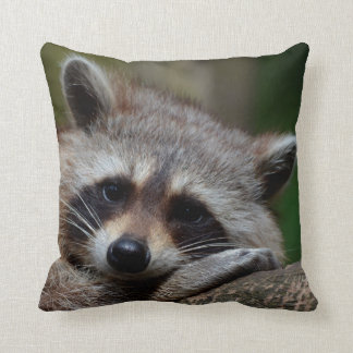 Outrageously Cute Baby Raccoon Cushion