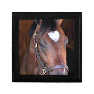 Outrun by Medaglia d'Oro - Indian Vale Small Square Gift Box