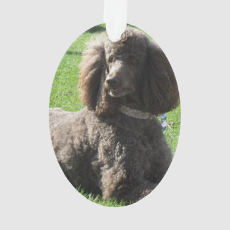 Oval Poodle Ornament