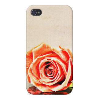 Over Exposed Rose Cover For iPhone 4