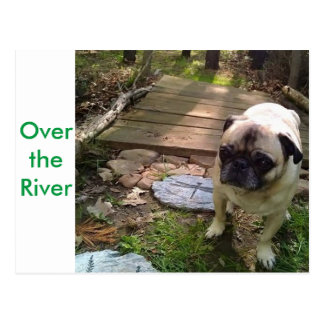 Over the River Postcard