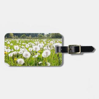 Overblown dandelions in green dutch meadow luggage tag