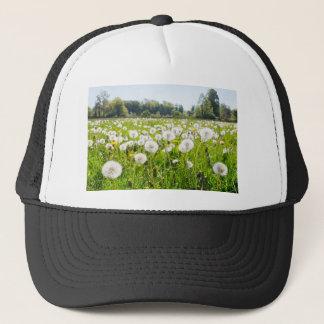 Overblown dandelions in green dutch meadow trucker hat