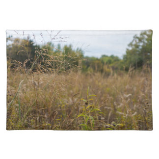 Overgrown Prairie Placemat