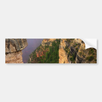 Overlook at Grand Canyon National Park Bumper Sticker